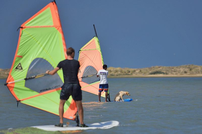 windsurfing in sri lanka beginner course